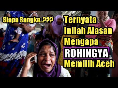 Rohingya Kurang Ajar Di Malaysia Mungkin Ada Sebabnya | Rohingya Di Aceh Sekarang