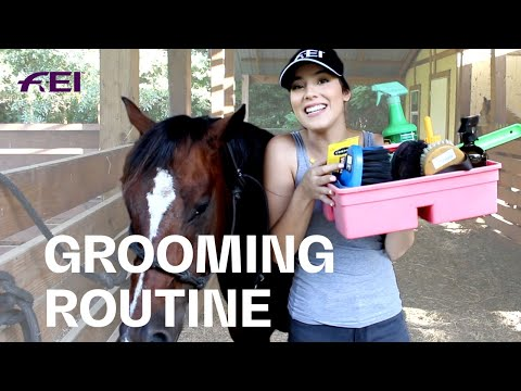 Grooming Routine W/ Cindy Valentina | Guest Vlog