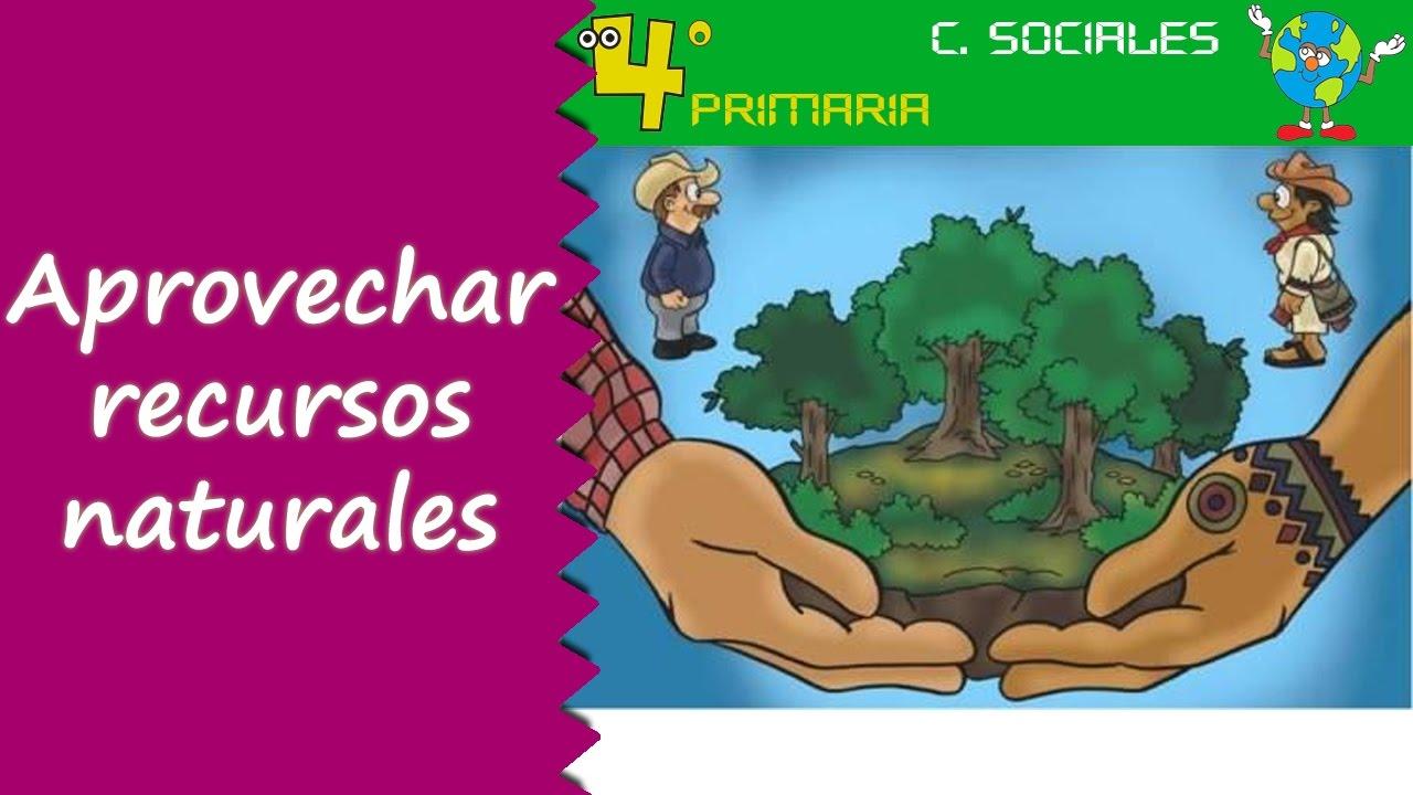 Ciencias Sociales. 4º Primaria. Tema 4. Aprovechamiento de los ...