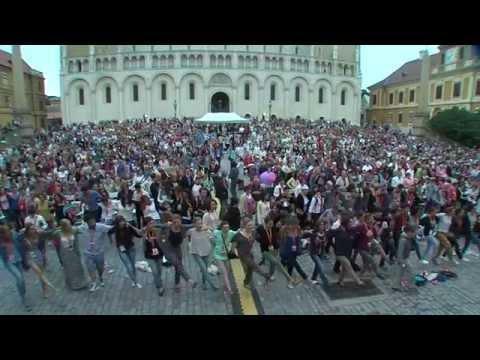 EUROPA CANTAT XIX - Pécs 2015 Fesztivál dal - Sing, sing! - átdolgozás