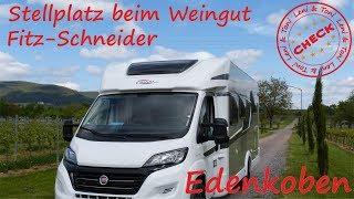 Leni & Toni CHECK: Stellplatz am WEINGUT Fitz-Schneider in Edenkoben | PFALZ |