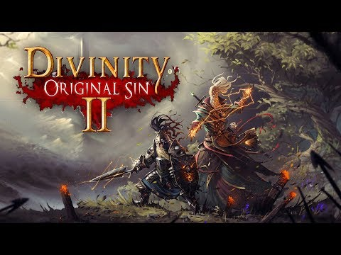 What is... Divinity: Original Sin 2 (Co-op Experience)
