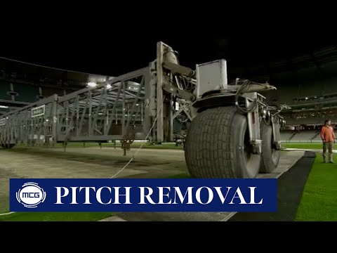 How Do We Remove The Portable Cricket Wickets, And Where Do They Go?