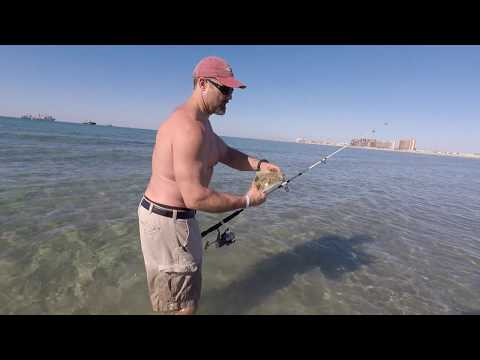 Flounder Fishing Rocky Point Mexico - Surf Fishing