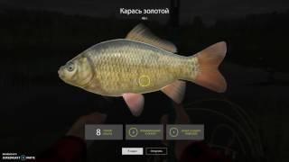 Русская рыбалка 4 - Уклейка.  #Заработок серебра