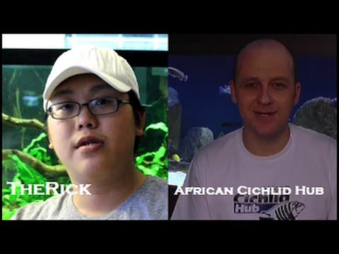 TheRick One on One with African Cichlid Hub