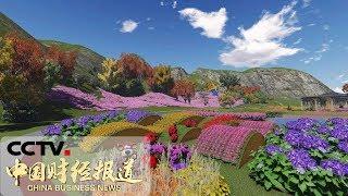 《中国财经报道》 山东青岛:花卉产业为花农铺就致富路 20190429 15:00 | CCTV财经