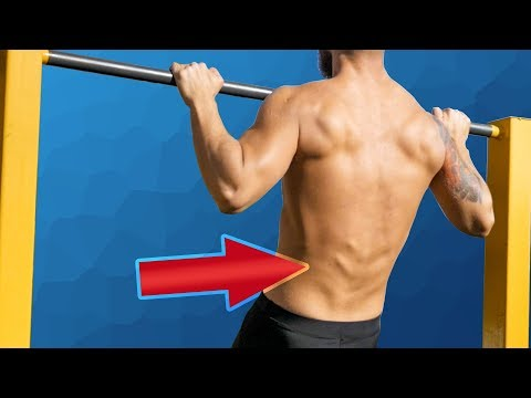 How to Train LOWER BACK with Calisthenics