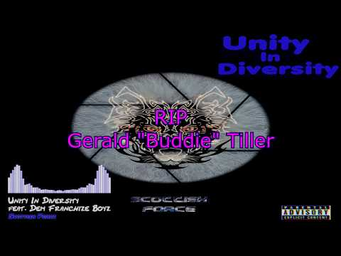 Unity In Diversity feat.  Dem Franchize Boyz by Scottish Force