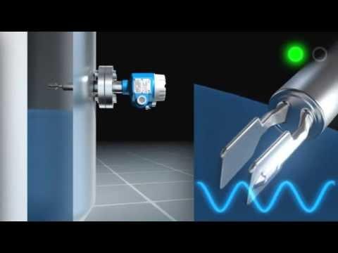 Vibronic measuring principle animation (Endress Hauser)