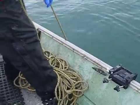 Southeast Alaska Trawling