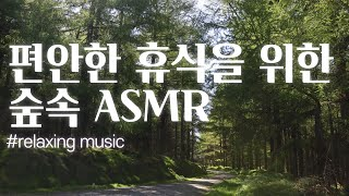[여름의 숲속] 수면음악,  명상음악, 스트레스 해소음…