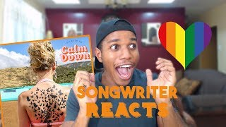 Songwriter Reacts to Taylor Swift You Need To Calm Down