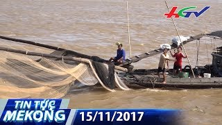 Cách bắt cá độc đáo của người miền Tây | TIN TỨC MEKONG - 15/11/2017