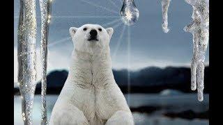 Место на Земле где решается судьба климата. Когда наступит новый ледниковый период.  Док. фильм.