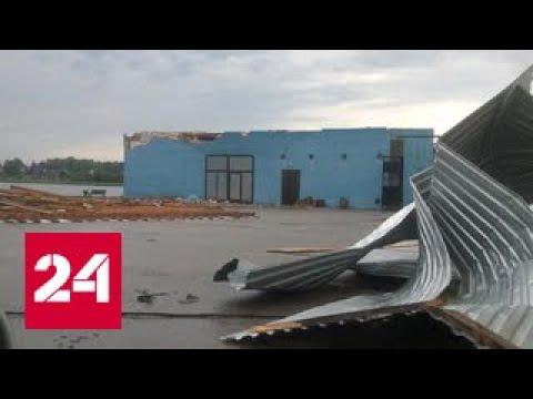 Ураган в Псковской области: упавшее дерево раздавило палатку с подростком