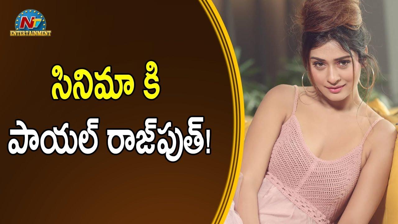 కష్టాల్లో పాయల్ రాజ్పుత్! | NTV Entertainment