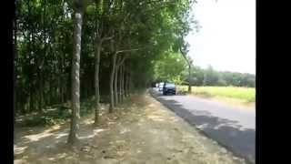Touring Daihatsu Hijet Solo Raya HSR to Sragen and Kemuning