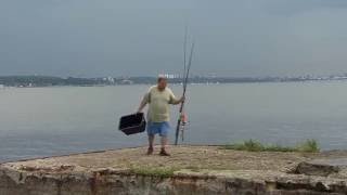 Augustikuu kala - lest ja selle püüdmine. Klipi tegi Filmimees