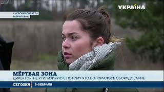 Куриный могильник под открытым небом обнаружили в Киевской области