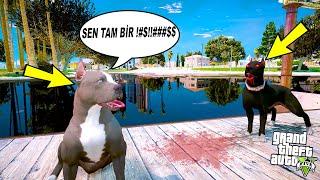 TERMİNATÖR ABİSİ SİYAH PİTBULL TYSON'LA KAVGA EDİYOR! - GTA 5