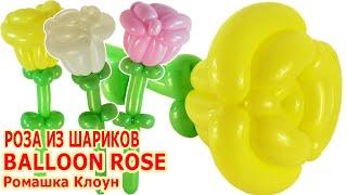 РОЗА ИЗ ДЛИННЫХ ШАРИКОВ ШДМ как сделать Balloon Rose Flower TUTORIAL