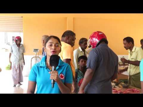 யாழ்ப்பாணம் வரவேற்கிறது | Welcome to Jaffna | மானிப்பாய் கிராமம் | Manipay|Paraparapu Media