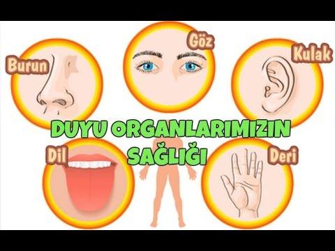 Duyu Organlarimizin Sagligi Youtube