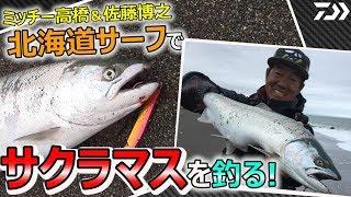 ミッチー高橋テスターと佐藤博之テスターが北海道で人気の海サクラマスを攻略!Aiveセミロングでヒット連発!?