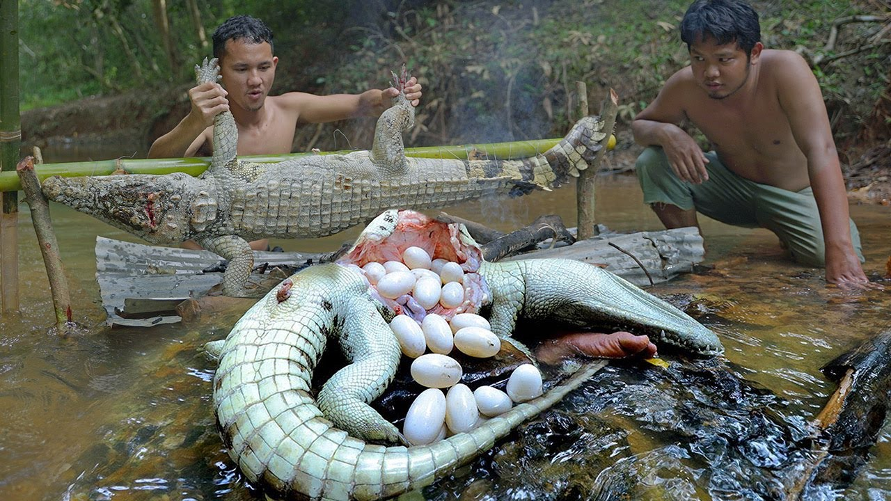 Download Amazing Two Brother Catch Crocodile Egg to Cook Eating to Survival