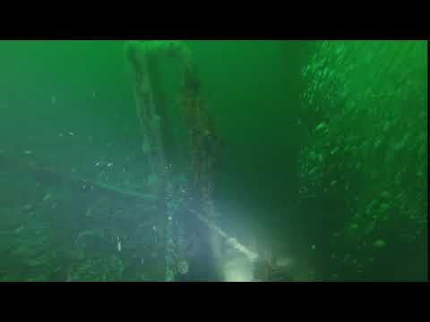 Illawarra Shore Dive with Andrew and Nic   Exploring the stern of the vessel 02 01 2018