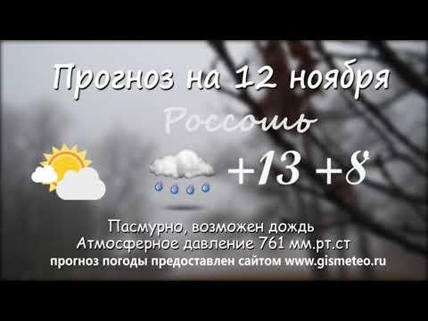 Прогноз погоды на 12.11.2019, Блокнот Россоши