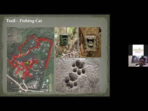 Download Nocturnal Wildlife Webinar