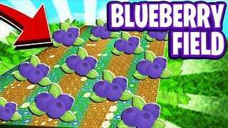 NEW Blueberry Field In Roblox Bee Swarm Simulator (Update Leaks and Info)
