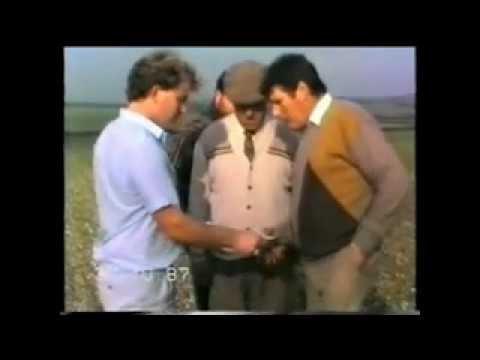 The pheasant plucker hare coursing in the 1980s j.davis w.tuff m.cash.h.weaver,mellish