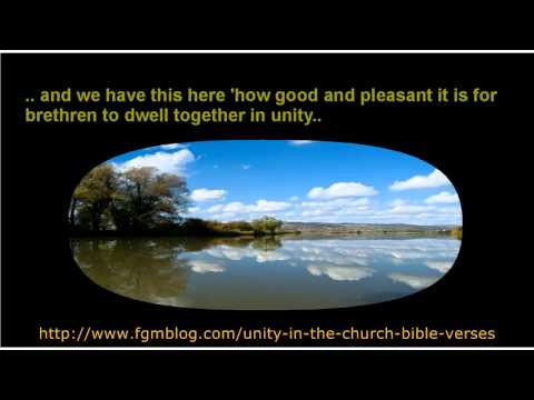 Unity In The Church Bible Verses