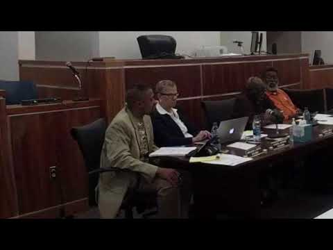 Georgetown City Councilman Sheldon Butts asks for council/mayor pay study