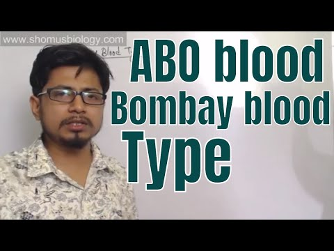 ABO Blood Type And Bombay Blood Type