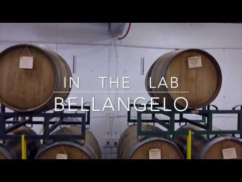 In the Winemaking Lab with the Wine Lab Analyzer - Bellangelo, Premium Finger Lakes Wine