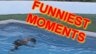 FUNNIEST Q&A MOMENTS!! thumbnail