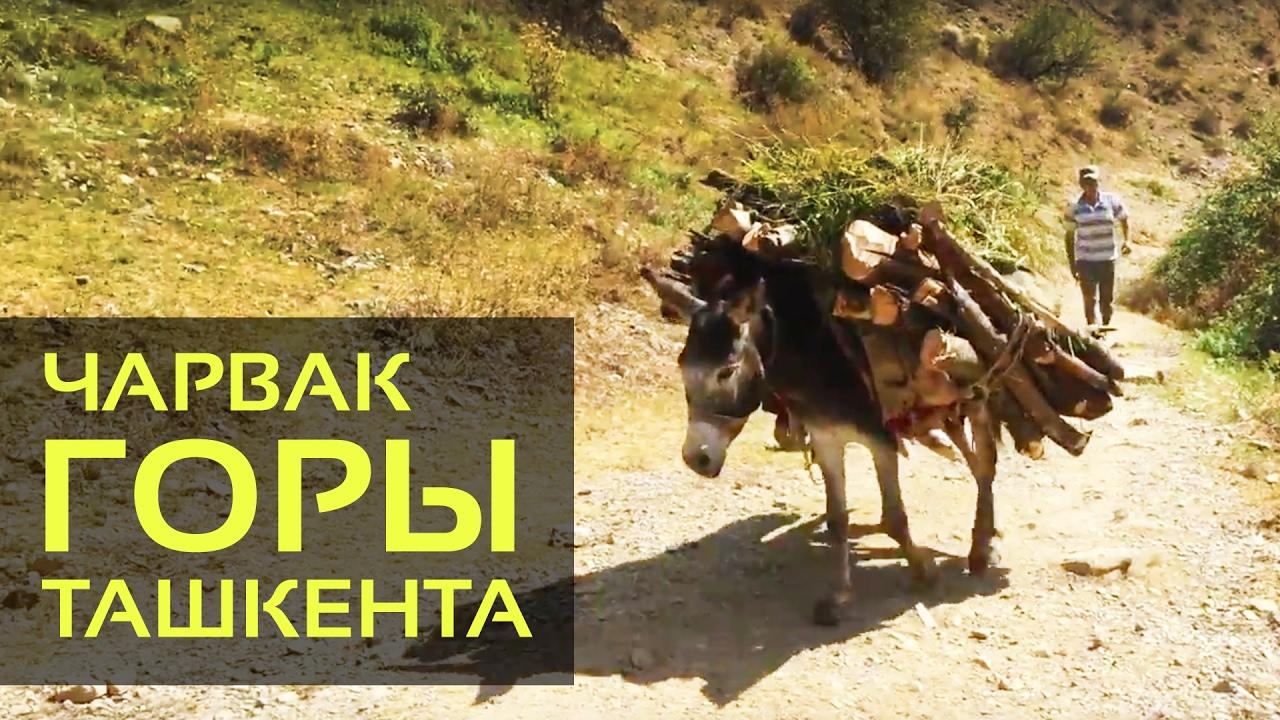 узбекистан горы фото