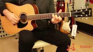 Ibanez PF15C Akustik Gitar İncelemesi (Hızlı Video)