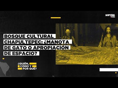 Bosque Cultural Chapultepec: ¿manota de gato o apropiación de espacio?