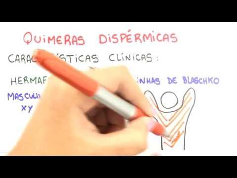 Me Salva! Ciências Da Saúde - IGN07 - Quimerismo E Mosaicismo