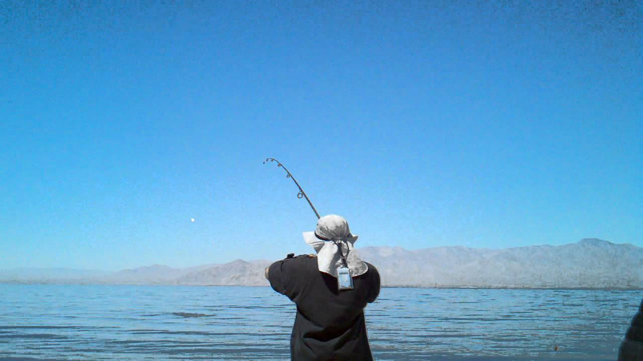 Salton sea catching not fishing 6 18 11 youtube for Salton sea fishing report