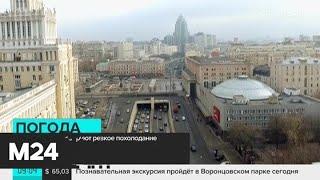 Смотреть видео В Москве прогнозируют резкое похолодание - Москва 24 онлайн