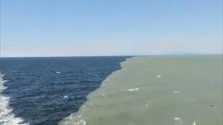Lugar donde 2 océanos se juntan pero no se mezclan 2017