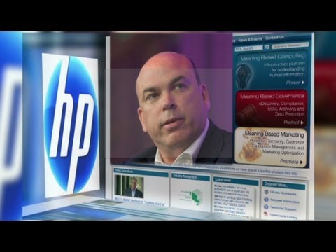 The HP-Autonomy merger: What went wrong?