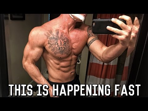 Grocery Haul - Physique Update - New Business Ventures | Shredding Season Ep. 18