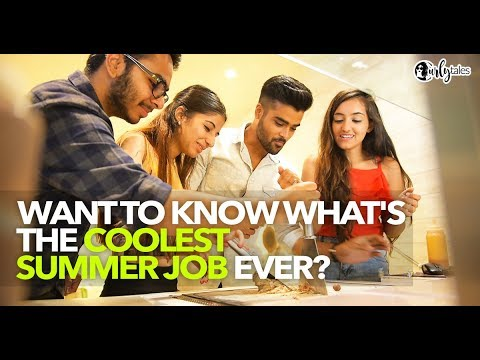 Get The Coolest Summer Job With Havmor | Curly Tales
